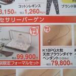 藤丸20130912